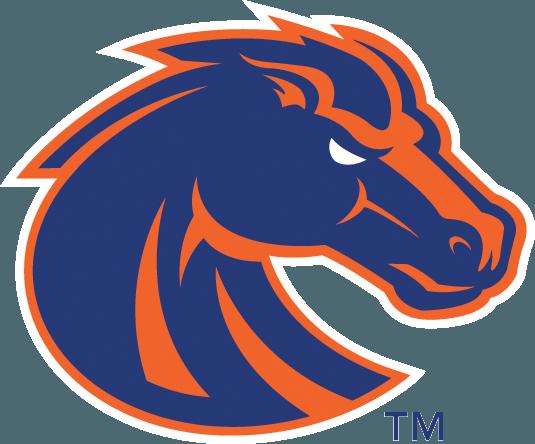 Boise State Broncos Golf Grip